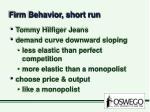 firm behavior short run