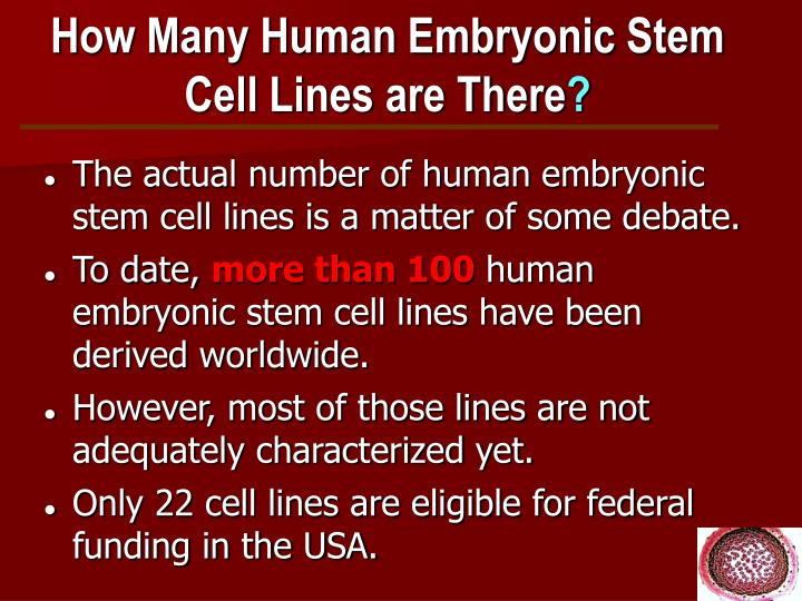 How Many Human Embryonic Stem Cell Lines are There