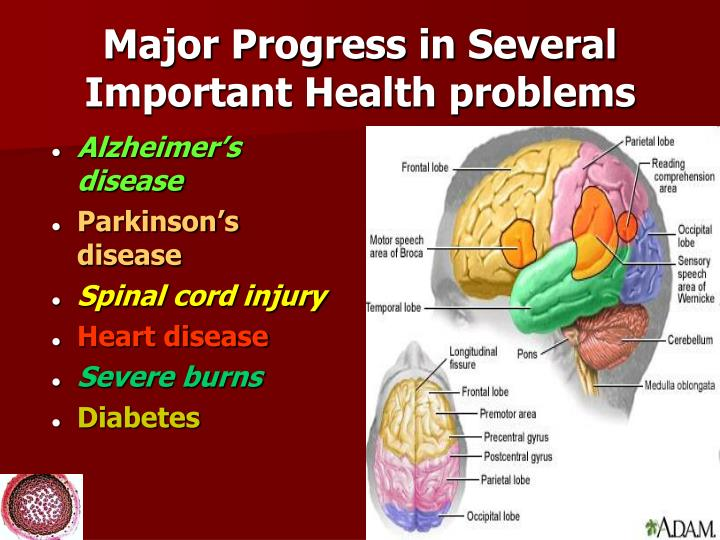 Major Progress in Several Important Health problems