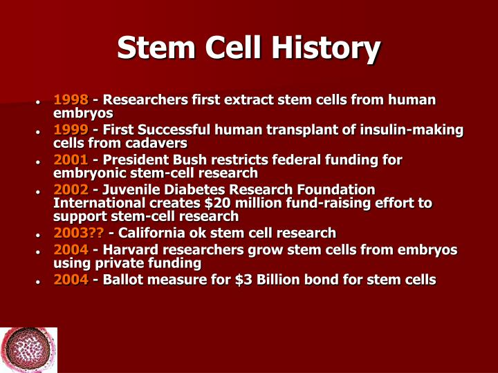 Stem Cell History