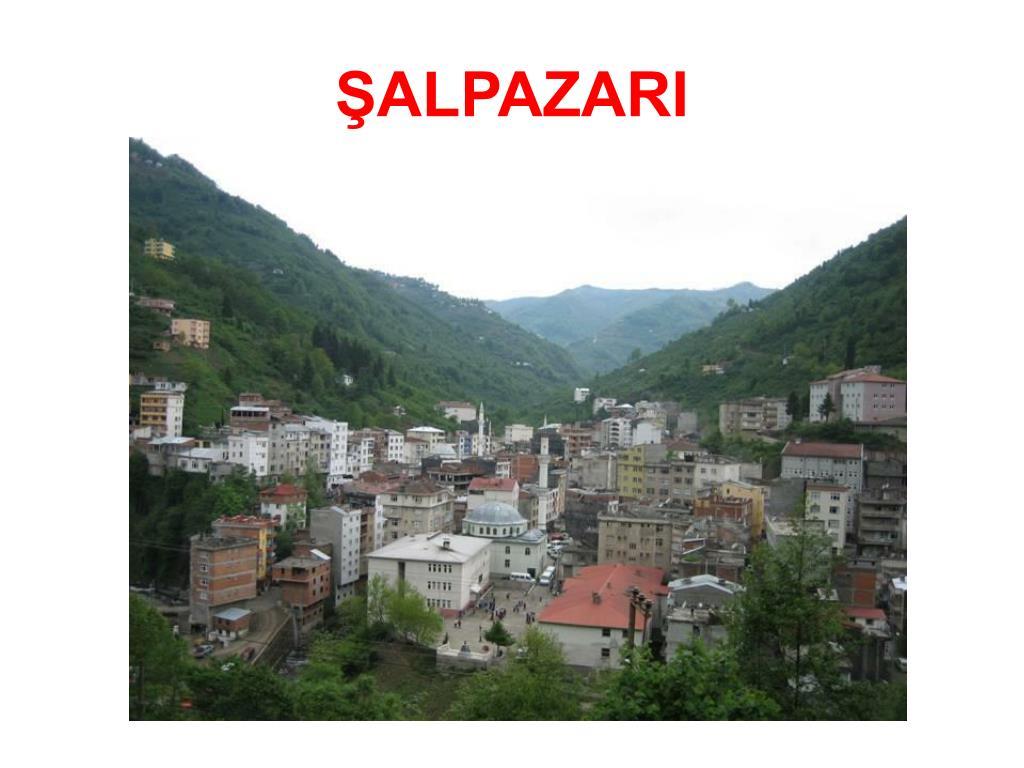 ŞALPAZARI