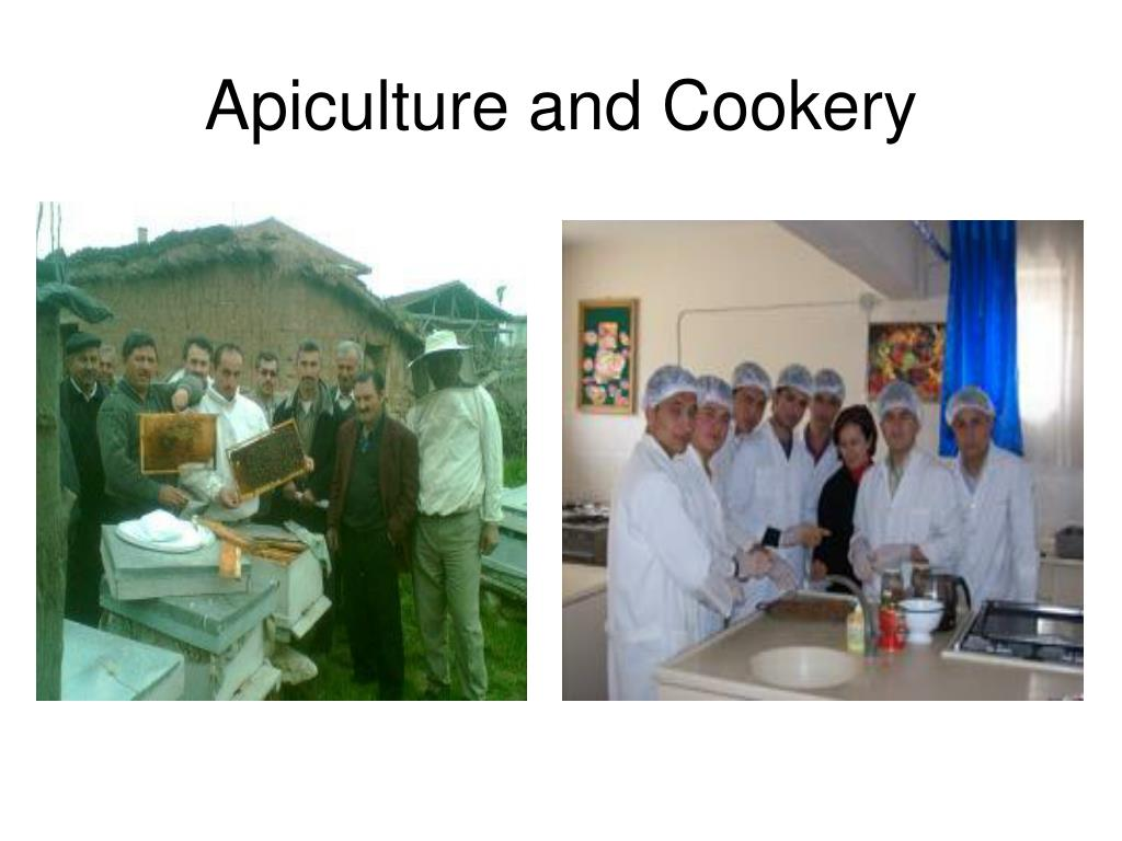 Apiculture and Cookery