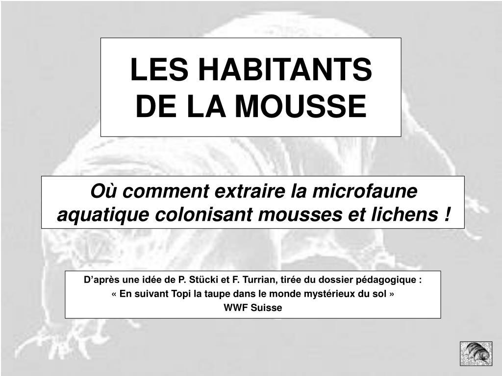 LES HABITANTS DE LA MOUSSE