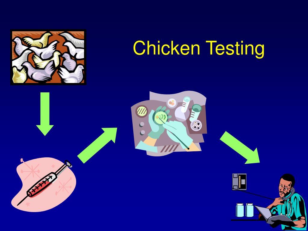 Chicken Testing