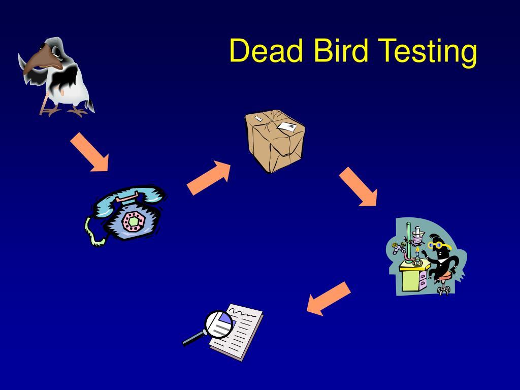 Dead Bird Testing