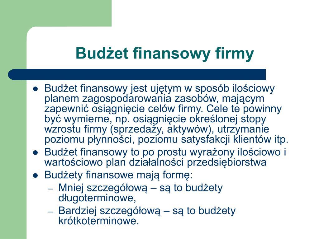Budżet finansowy firmy