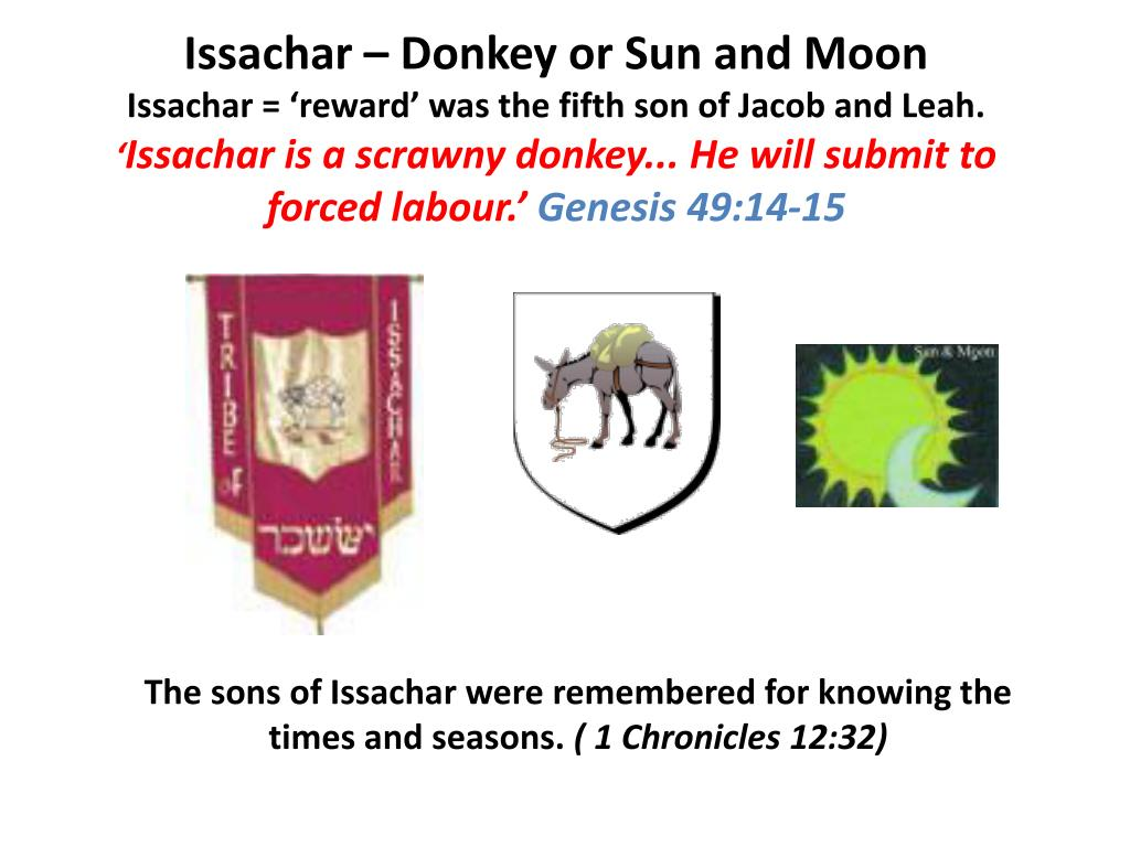 Issachar – Donkey or Sun and Moon