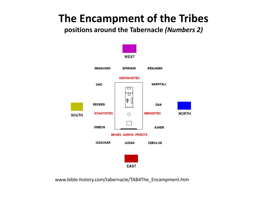 The Encampment of the Tribes