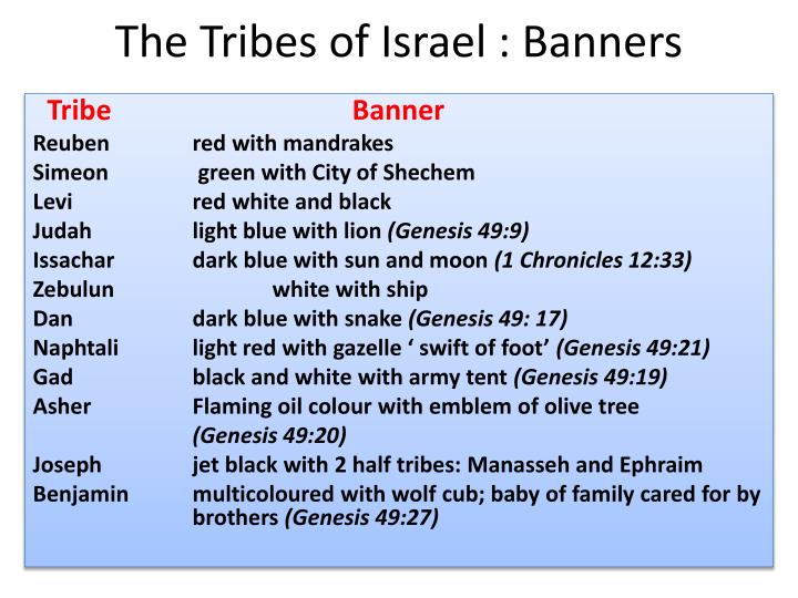 The tribes of israel banners l.jpg