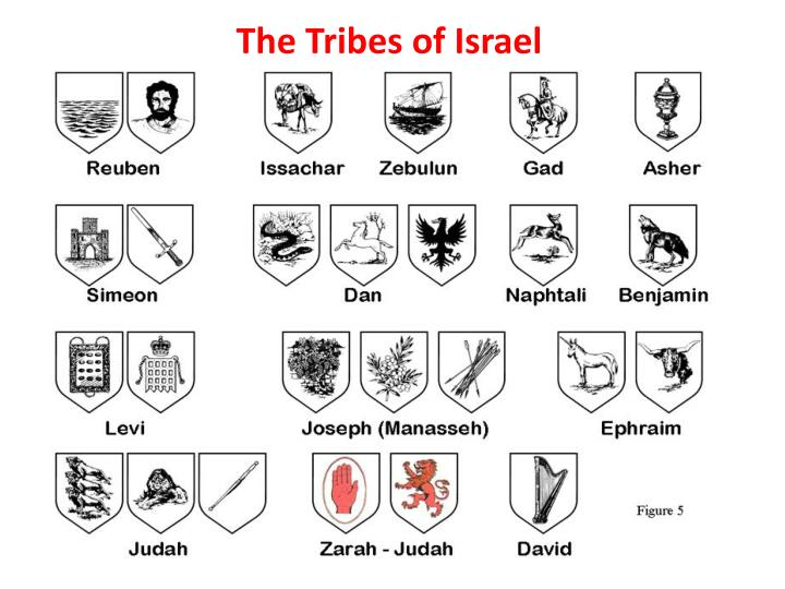 The tribes of israel l.jpg