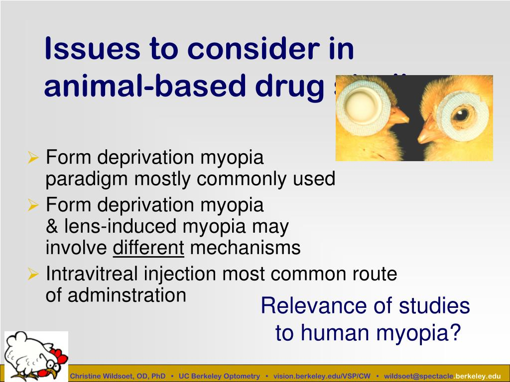 Issues to consider in animal-based drug studies