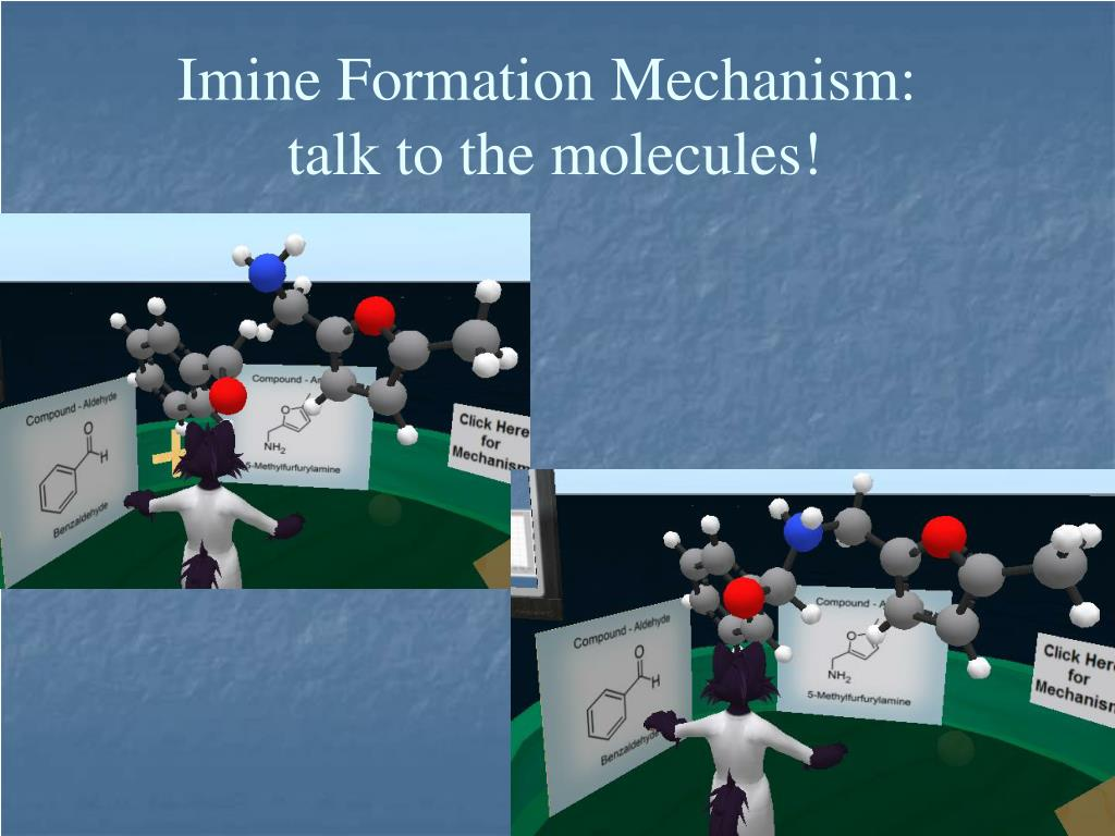 Imine Formation Mechanism: