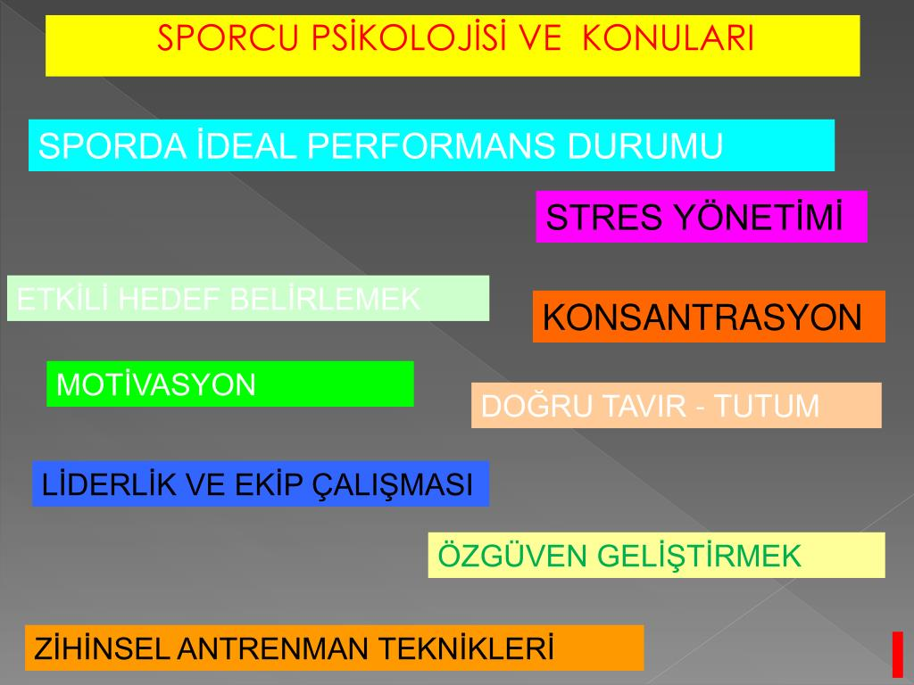 SPORDA İDEAL PERFORMANS DURUMU