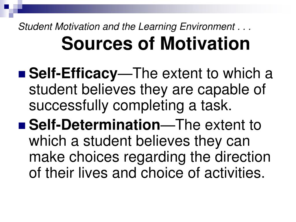 Student Motivation and the Learning Environment . . .