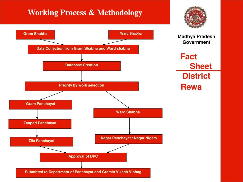 Working Process & Methodology