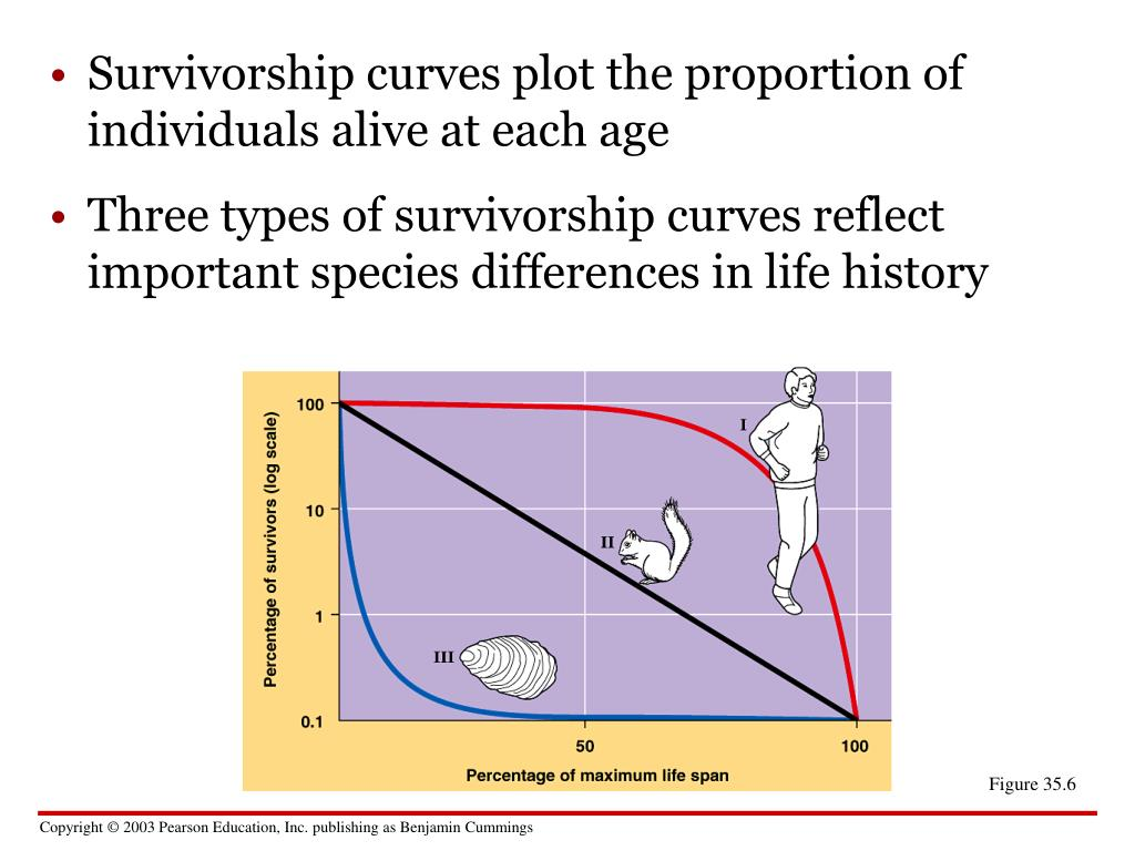 Three types of survivorship curves reflect important species differences in life history