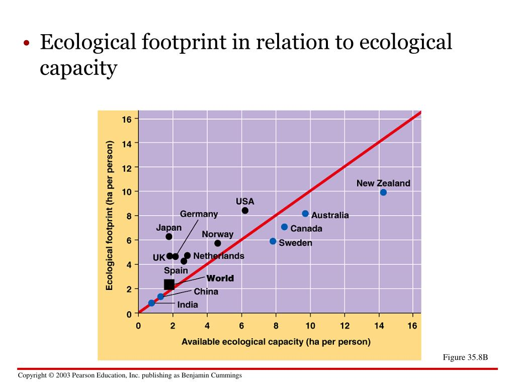Ecological footprint in relation to ecological capacity