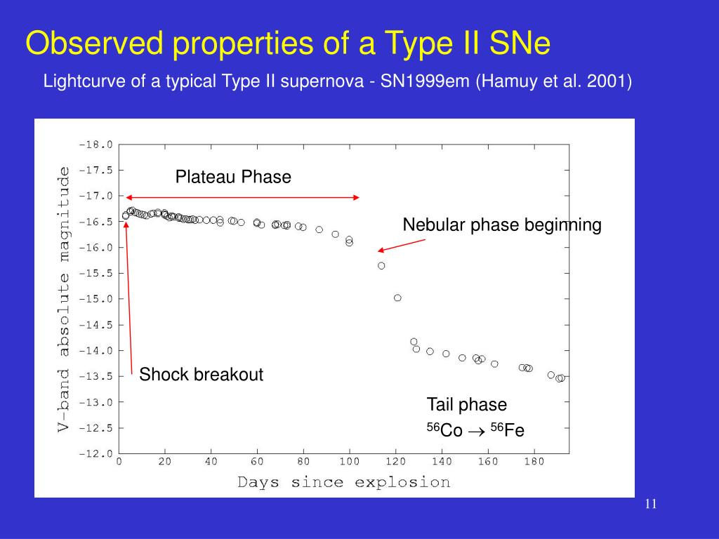 Observed properties of a Type II SNe