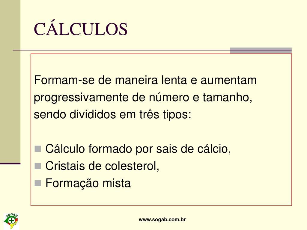 CÁLCULOS