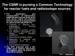the csnr is pursing a common technology for reactor fuels and radioisotope sources