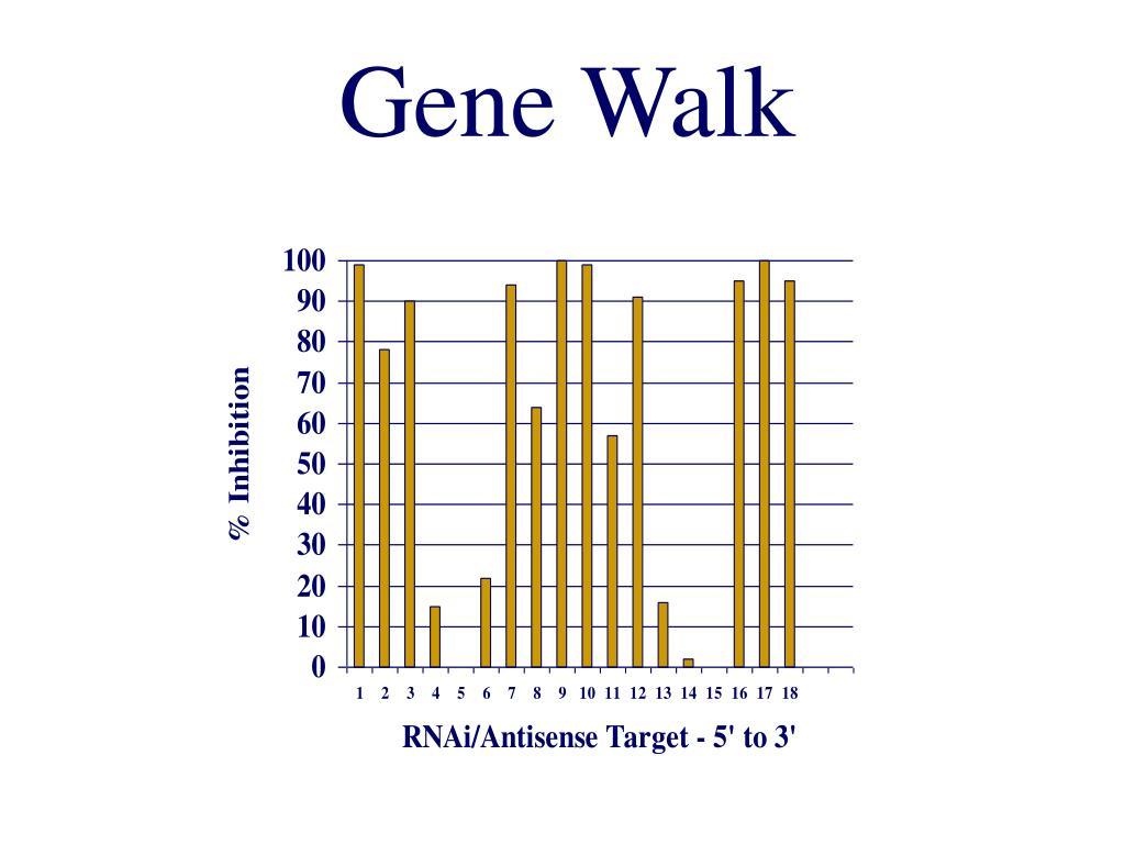 Gene Walk
