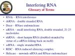 interfering rna glossary of terms