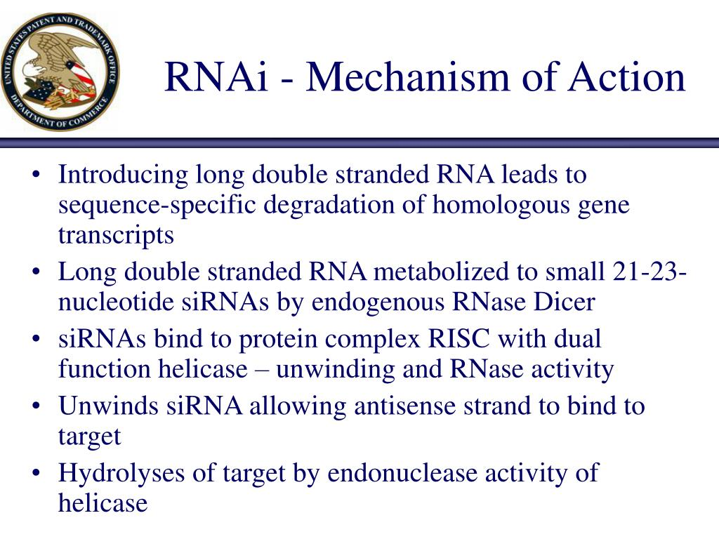 RNAi - Mechanism of Action