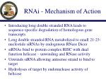 rnai mechanism of action