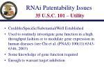 rnai patentability issues 35 u s c 101 utility
