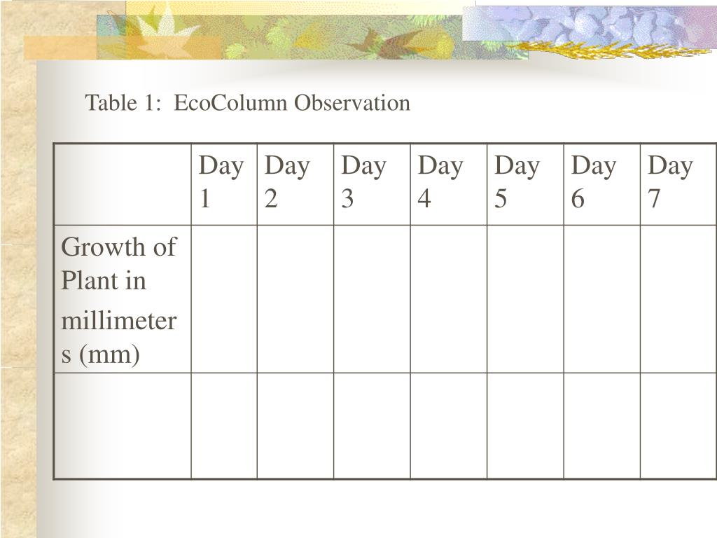 Table 1:  EcoColumn Observation