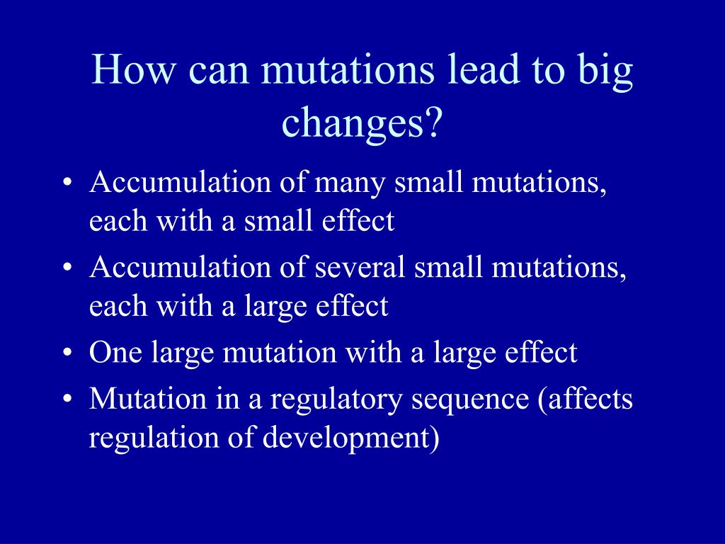 How can mutations lead to big changes?