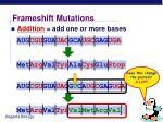 frameshift mutations12