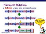 frameshift mutations13