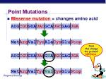 point mutations7