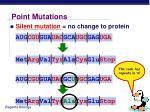 point mutations9