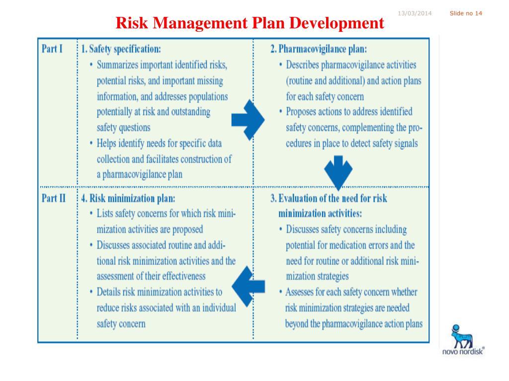 Risk Management Plan Development