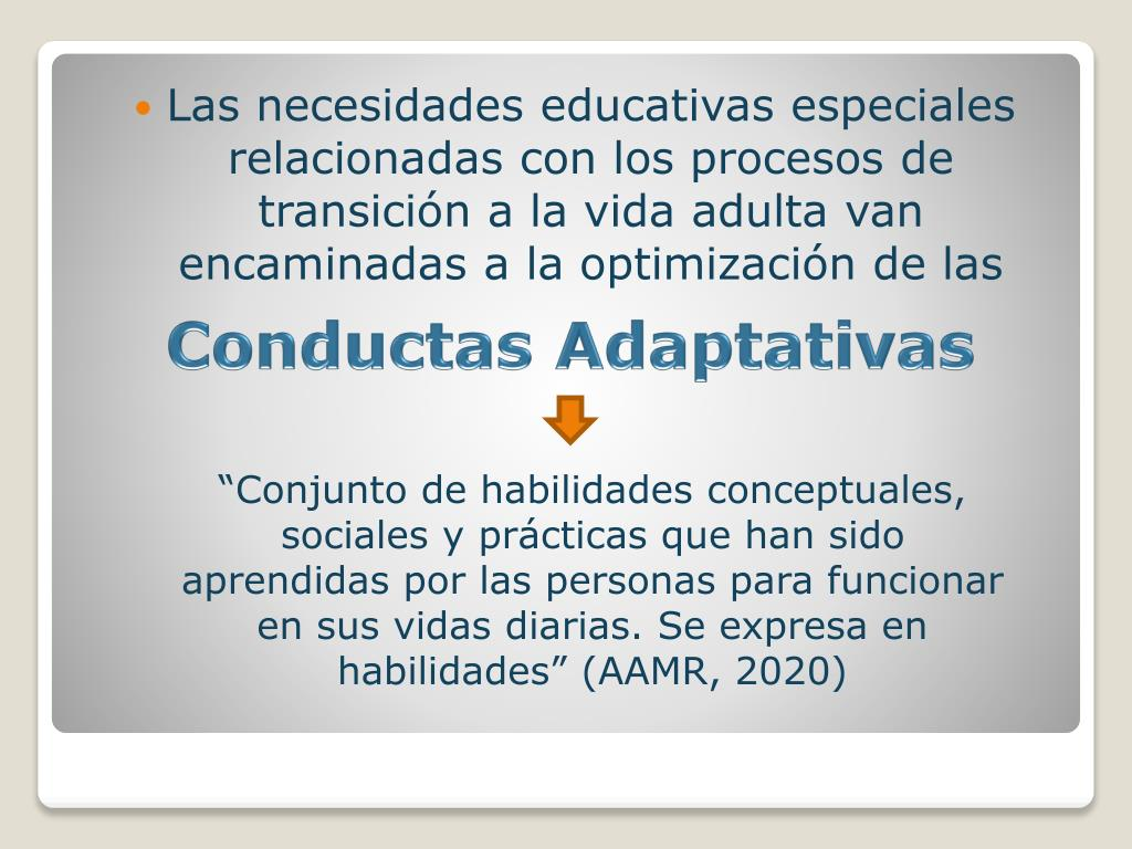 Las necesidades educativas especiales relacionadas con los procesos de transición a la vida adulta van encaminadas a la optimización de las