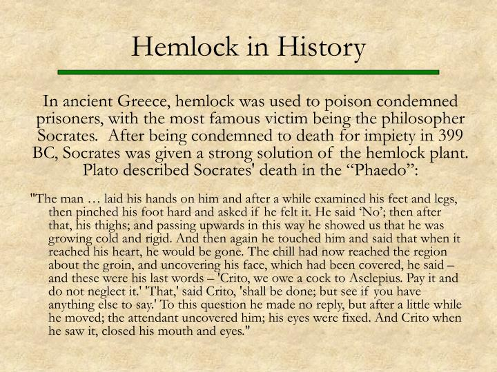 Hemlock in History