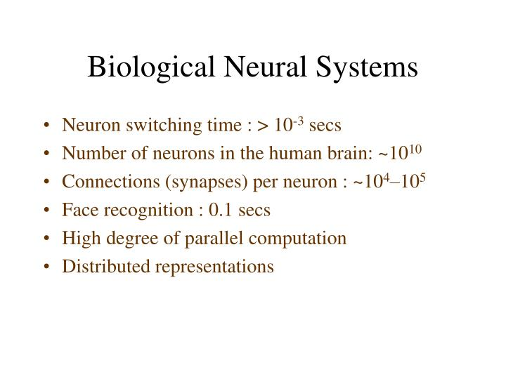 Biological neural systems l.jpg