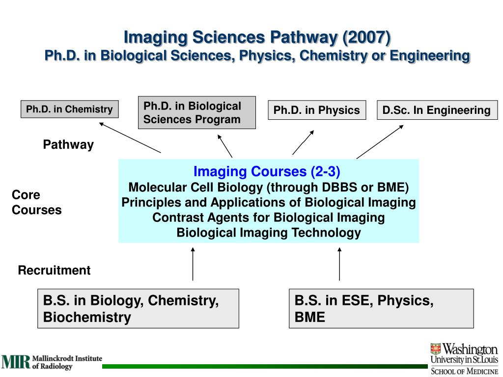 Imaging Sciences Pathway (2007)