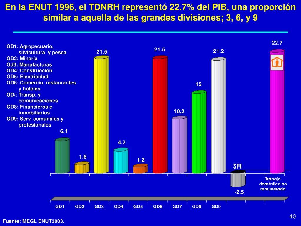 En la ENUT 1996, el TDNRH representó 22.7% del PIB, una proporción similar a aquella de las grandes divisiones; 3, 6, y 9