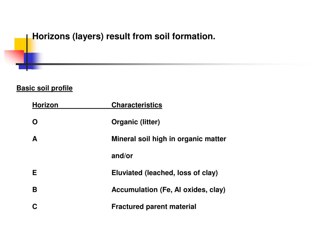 Horizons (layers) result from soil formation.