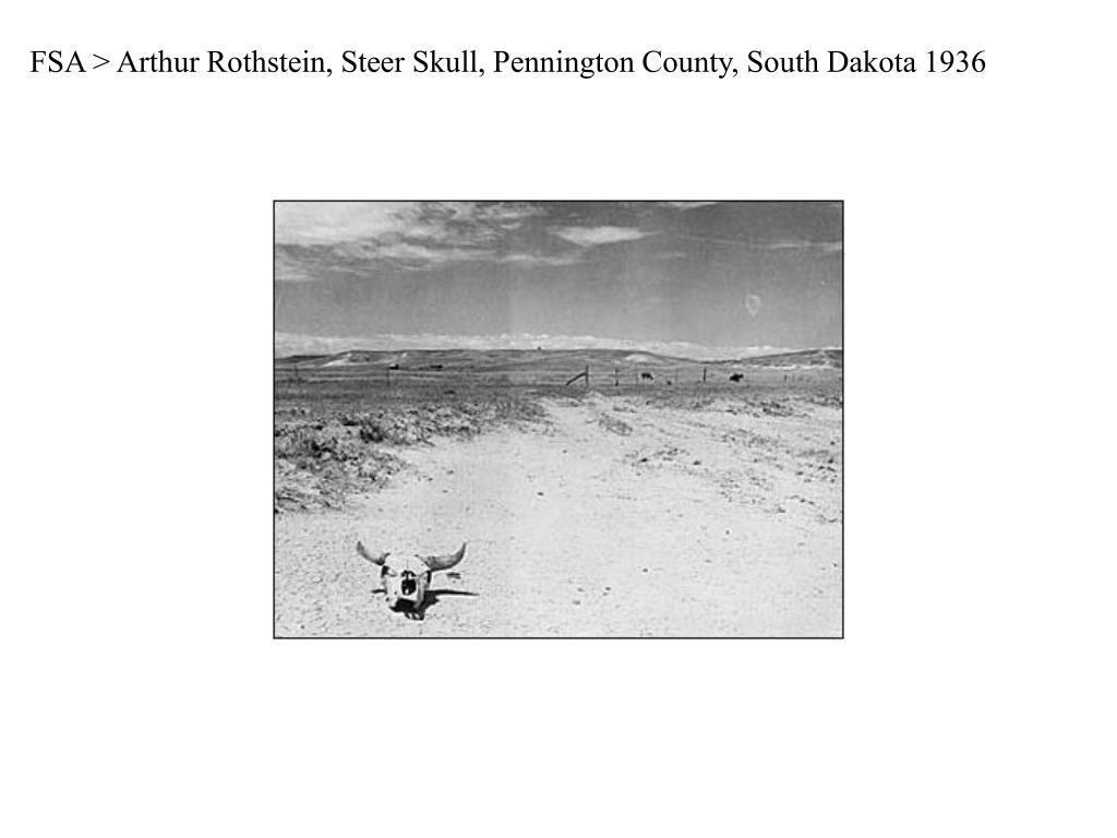 FSA > Arthur Rothstein, Steer Skull, Pennington County, South Dakota 1936