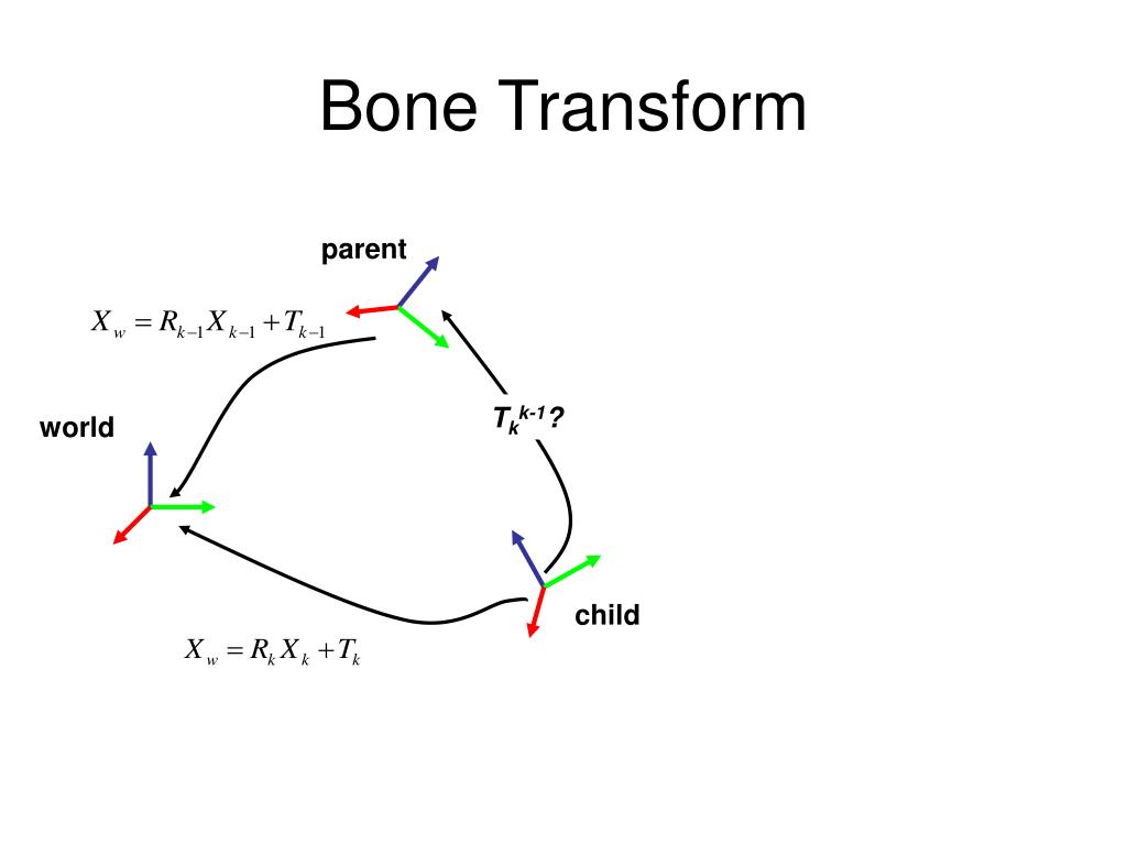 Bone Transform