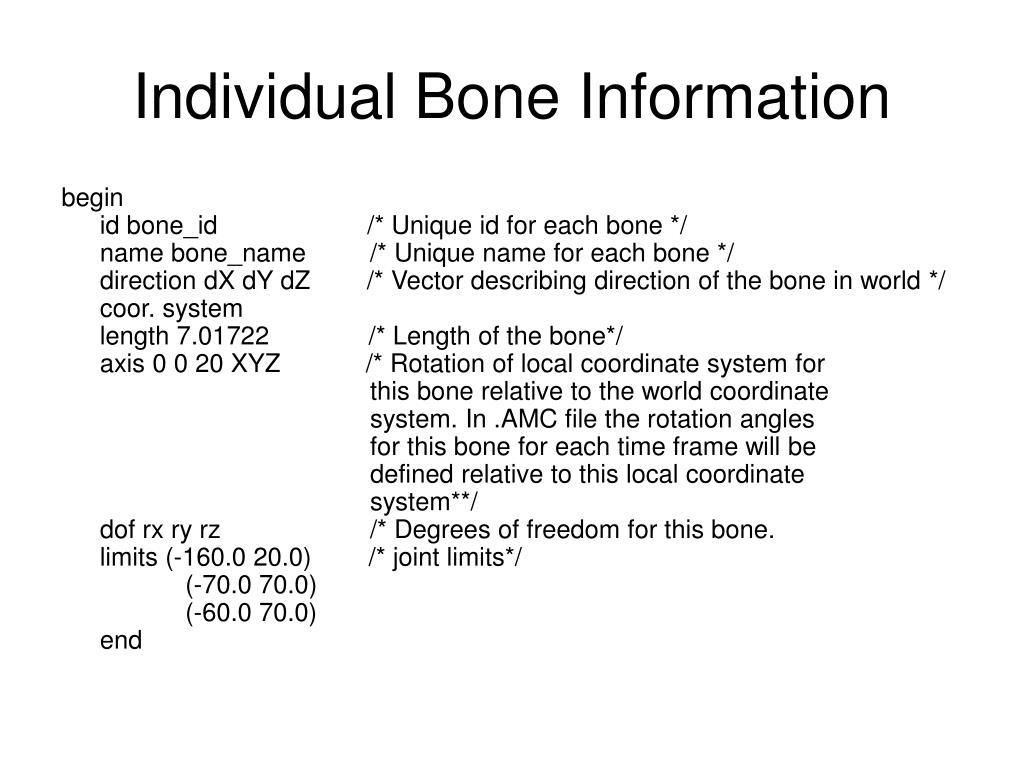 Individual Bone Information
