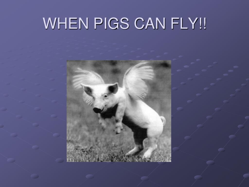 WHEN PIGS CAN FLY!!