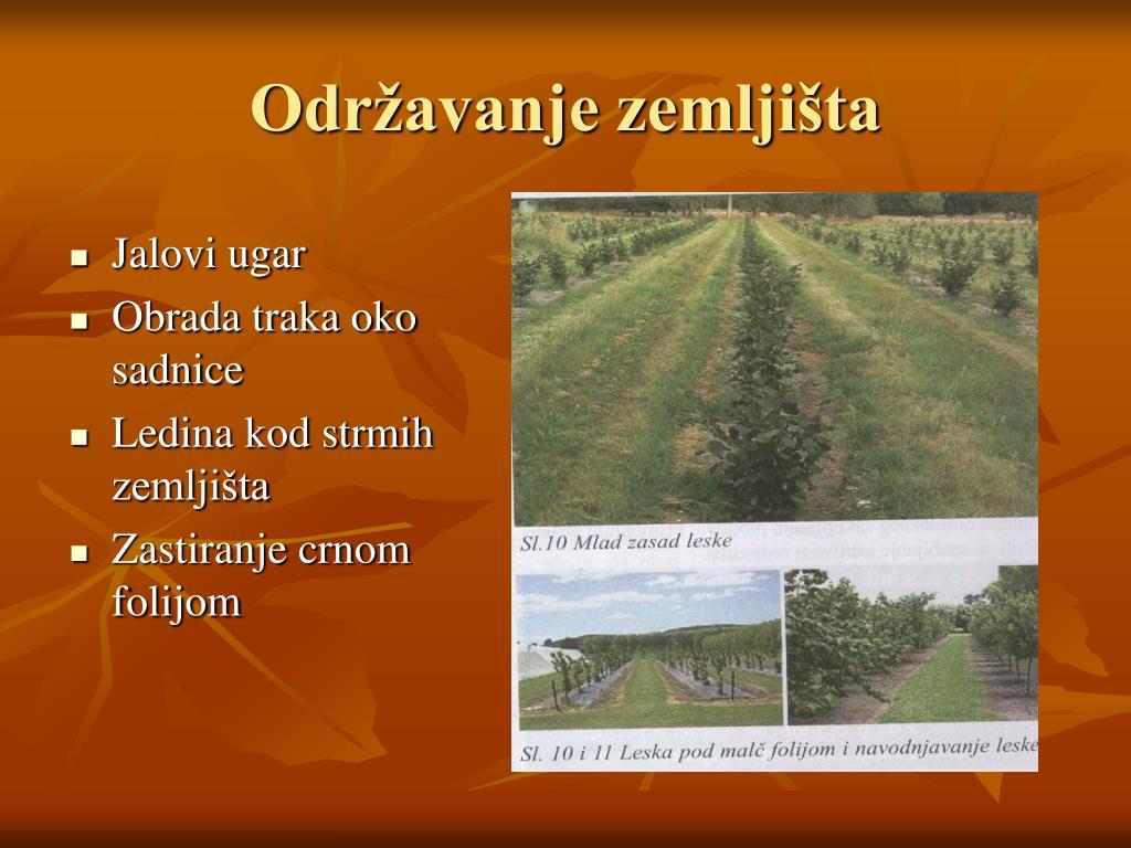 Održavanje zemljišta
