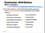 customer attributes what is quality