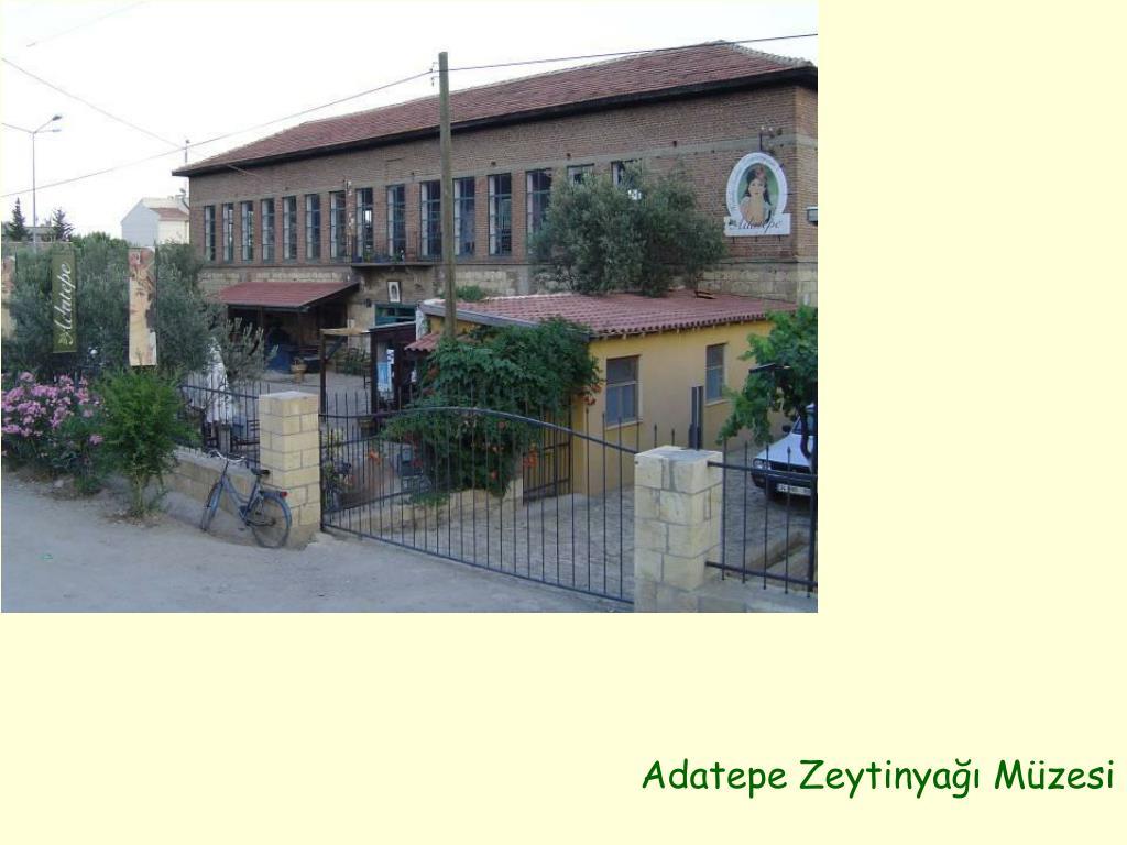 Adatepe Zeytinyağı Müzesi