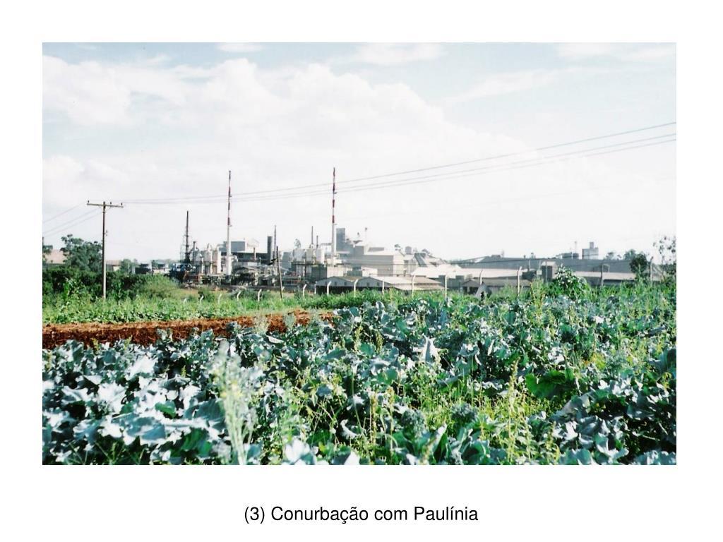 (3) Conurbação com Paulínia